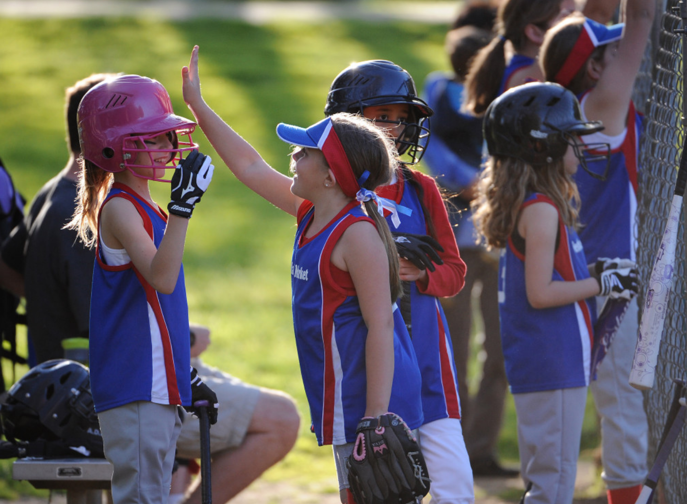 Quality Sport Programs : Softball